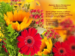 Nature___Flowers_Gerbera_beautiful_flowers_on_the_glade_066776_